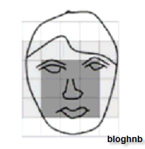Một lọai tri trức của người nghiên cứu phân tích trên khuôn mặt